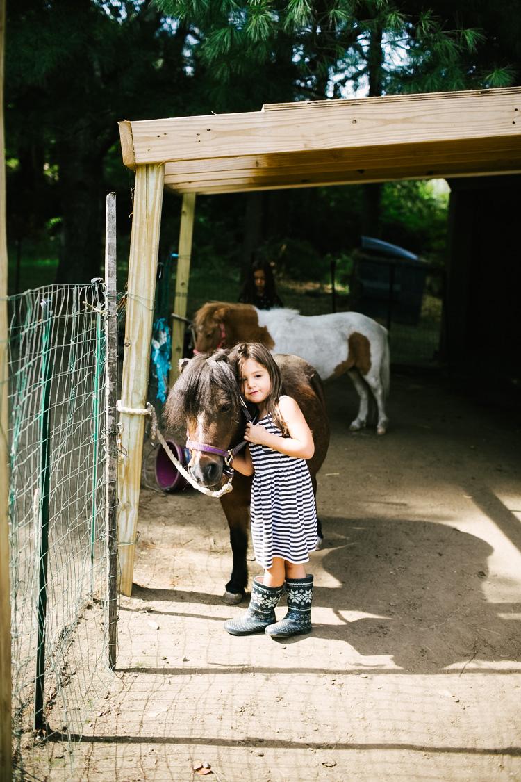 Faries_Ponies-4.jpg