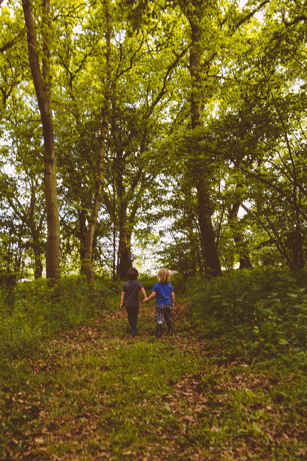 Boys strolling through the woods exploring and holding hands