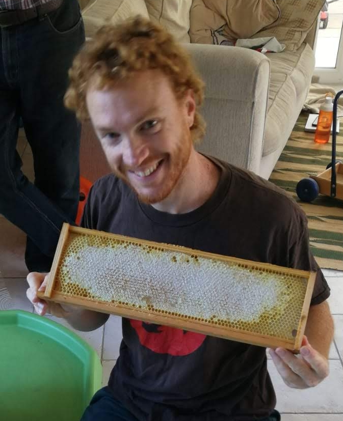A frame full of honey
