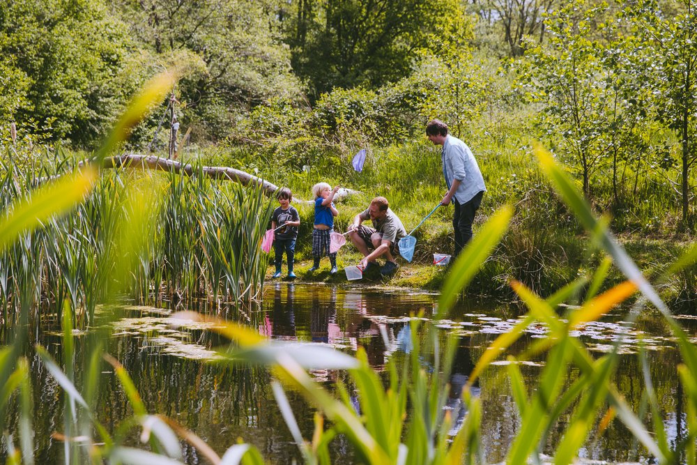 family activity pond dipping