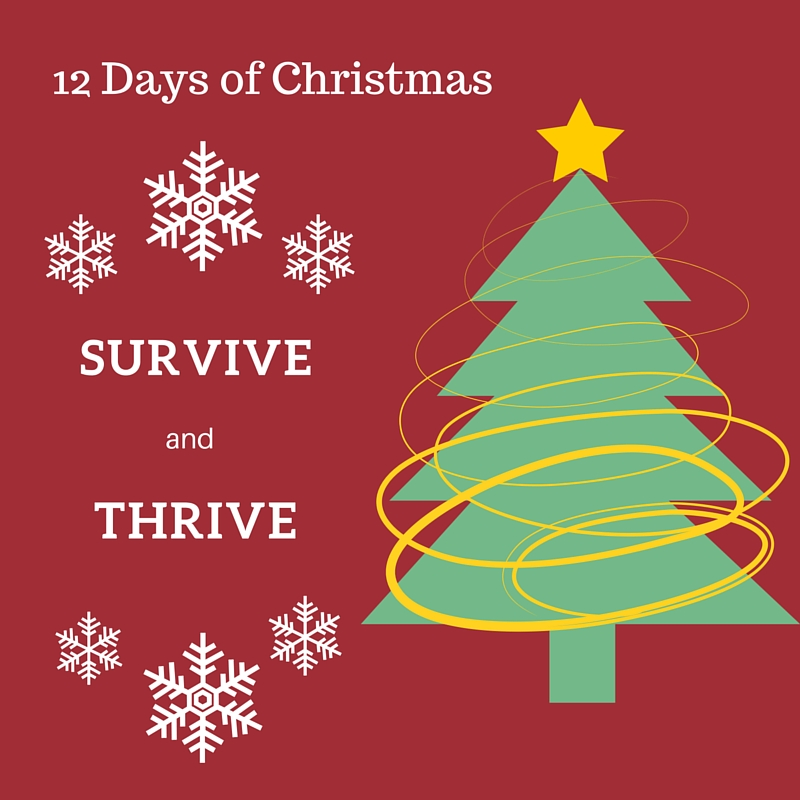 Click on the picture to have your own copy of Survive and Thrive through Christmas.