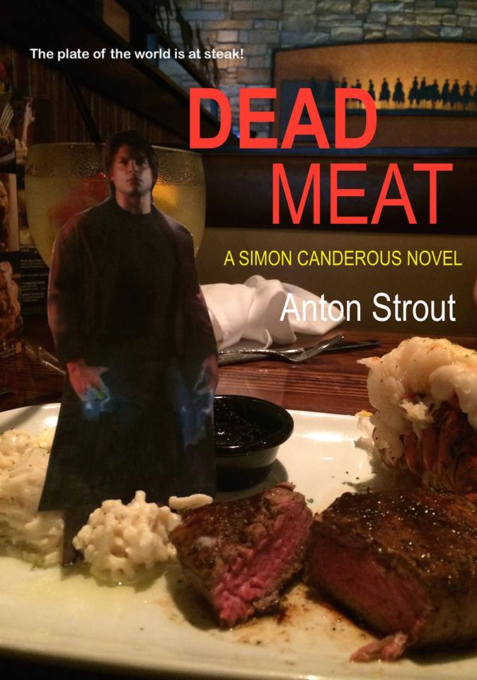 A pretend cover for book 5 of the Simon Canderous series...Or IS it?