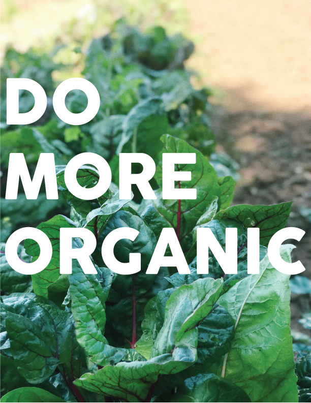 big news for organic farmers! - We're cheering on the wins for organic in the 2018 farm bill that was signed into law in December. With expanded (and permanent!) funding for organic research and maintaining organic standards, it has the potential to be a force for good in the American organic food industry. It's people like you that is making the smaller steps in the bigger picture. So thank you for choosing us! Let's do more organic together!