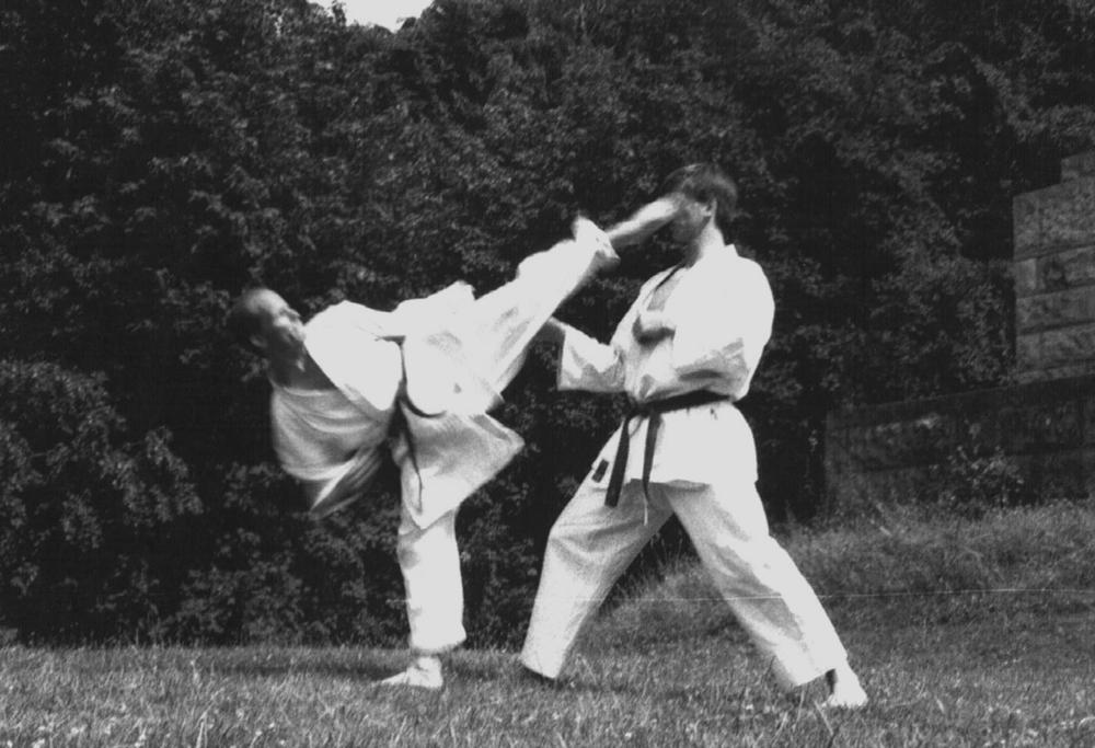Ura Mawashi Geri, 1995 (Mit  Mike Ramftel)