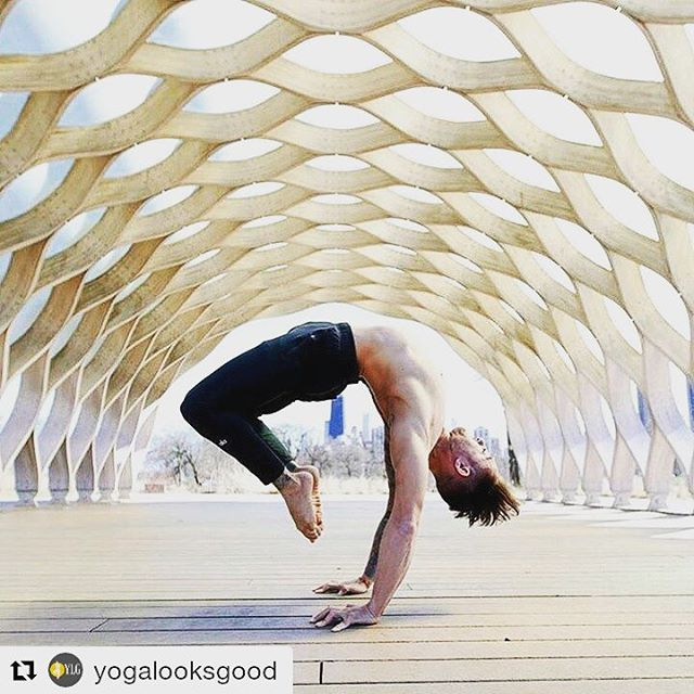 #Repost @yogalooksgood ・  When the breath wanders the mind also is unsteady. But when the breath is calmed the mind too will be still, and the yogi achieves long life. Therefore, one should learn to control the breath  @dylanwerneryoga  #yogaeverydamnday #yogamom #yogapants #fit #healthy #awakebygevitta #gevitta #vape #vitaminspray #vita #spray #trevorjosephfisher #losangeles #entrepreneur #hustle #multivitabygevitta