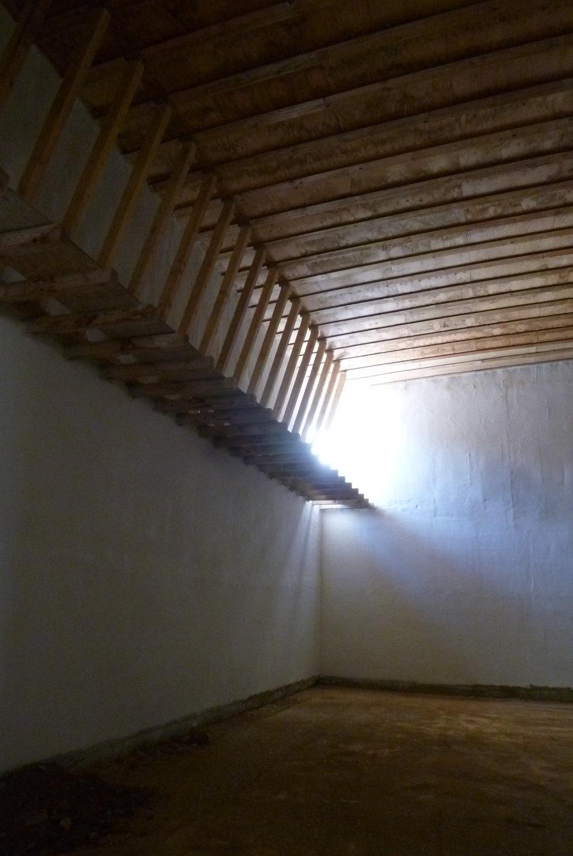 Cellar construction.jpg