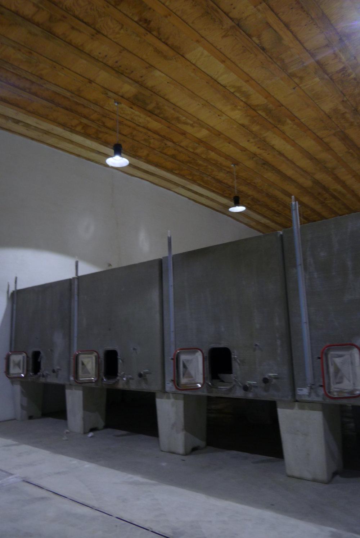 Hemp cellar - Jacques Herviou (4).JPG