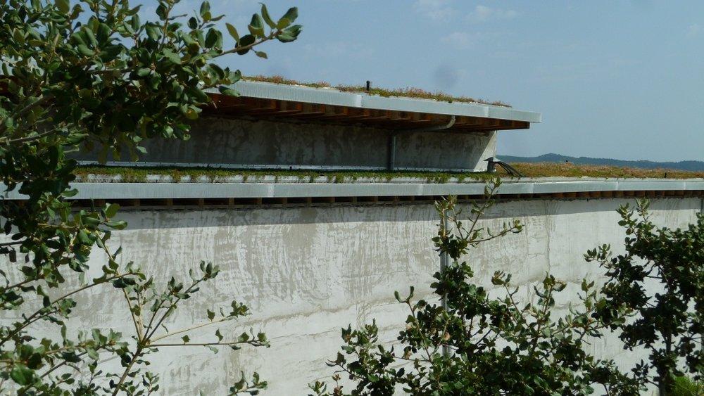 Hemp cellar side wall - Jacques Herviou (2).JPG