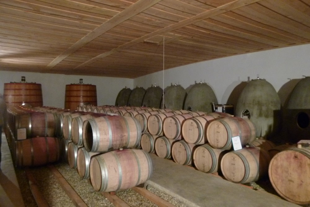 Maris Barrel Cellar - Jacques Herviou.JPG