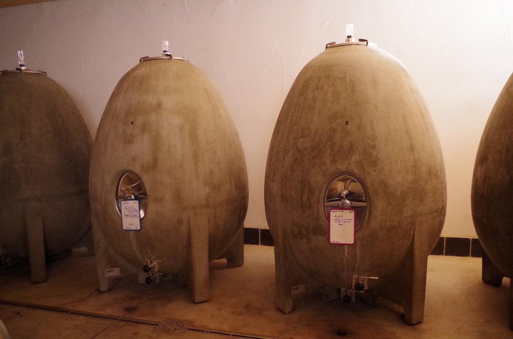 Maris concrete Eggs in cellar -  Jacques Herviou.JPG