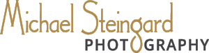 MSP-Logo-2016-01.png