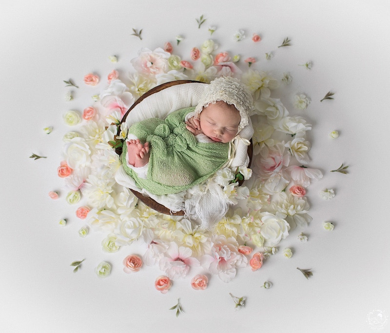 newborn-photos-nature-mandalas-4.jpg