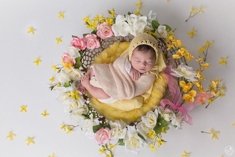 newborn-photos-nature-mandalas-6.jpg
