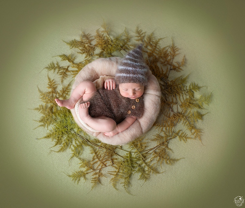 newborn-photos-nature-mandalas-5.jpg