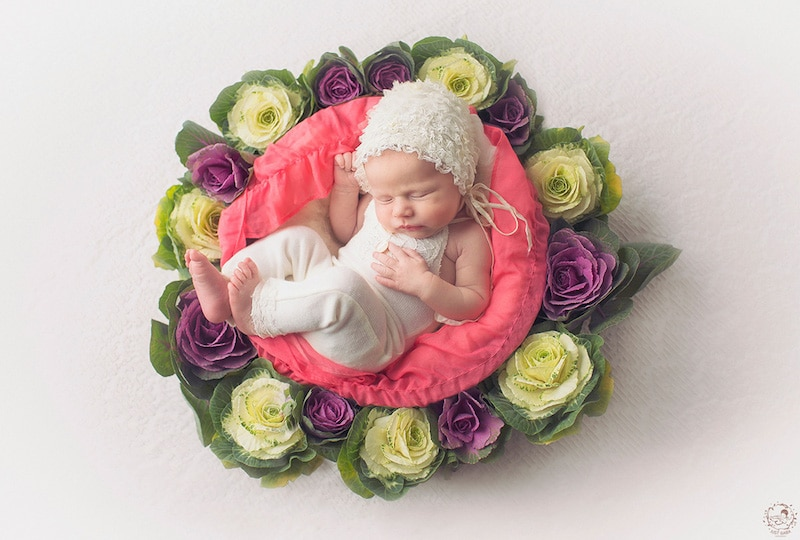 newborn-photos-nature-mandalas-7.jpg