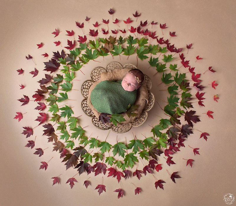 newborn-photos-nature-mandalas-1.jpg