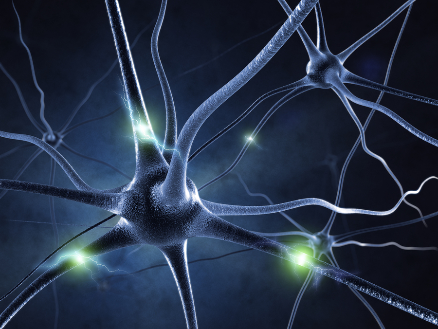 bigstock-active-nerve-cell-in-human-neu-16977458.jpg