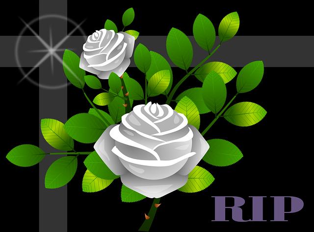 roses-1990831_640.png
