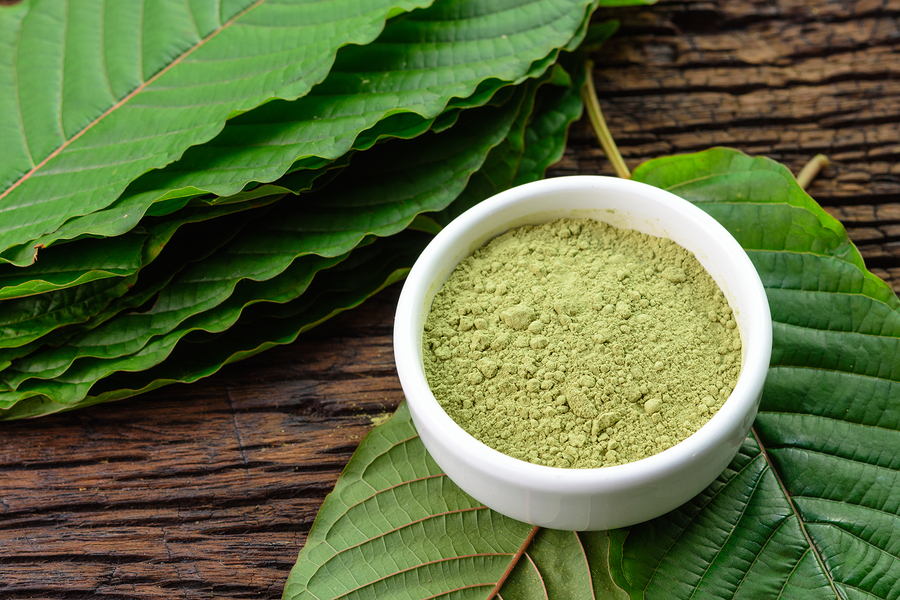 Image result for Unknown Facts About Legal Kratom Canada