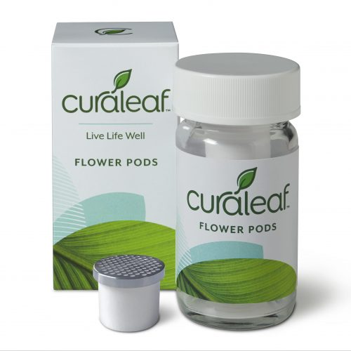 flower_pods_ceramic-e1534885071988.jpg