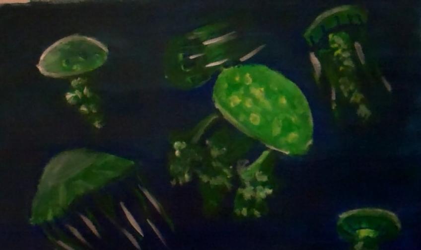 jellyfish3.jpg