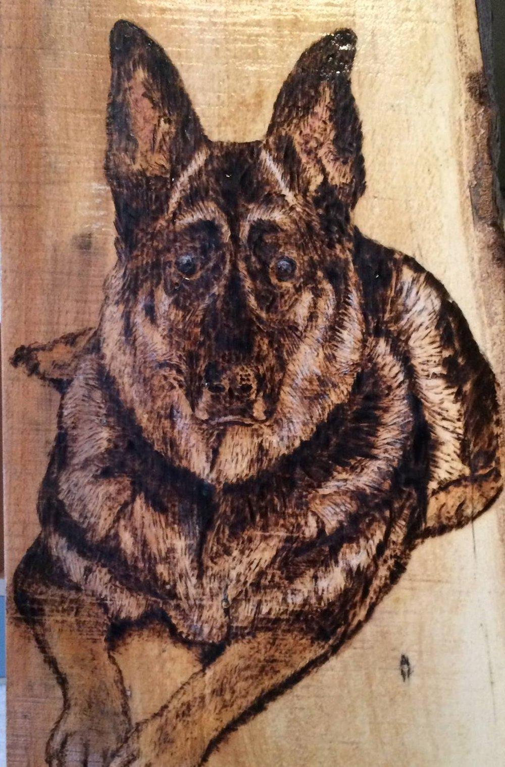 Cropped Dog.jpg