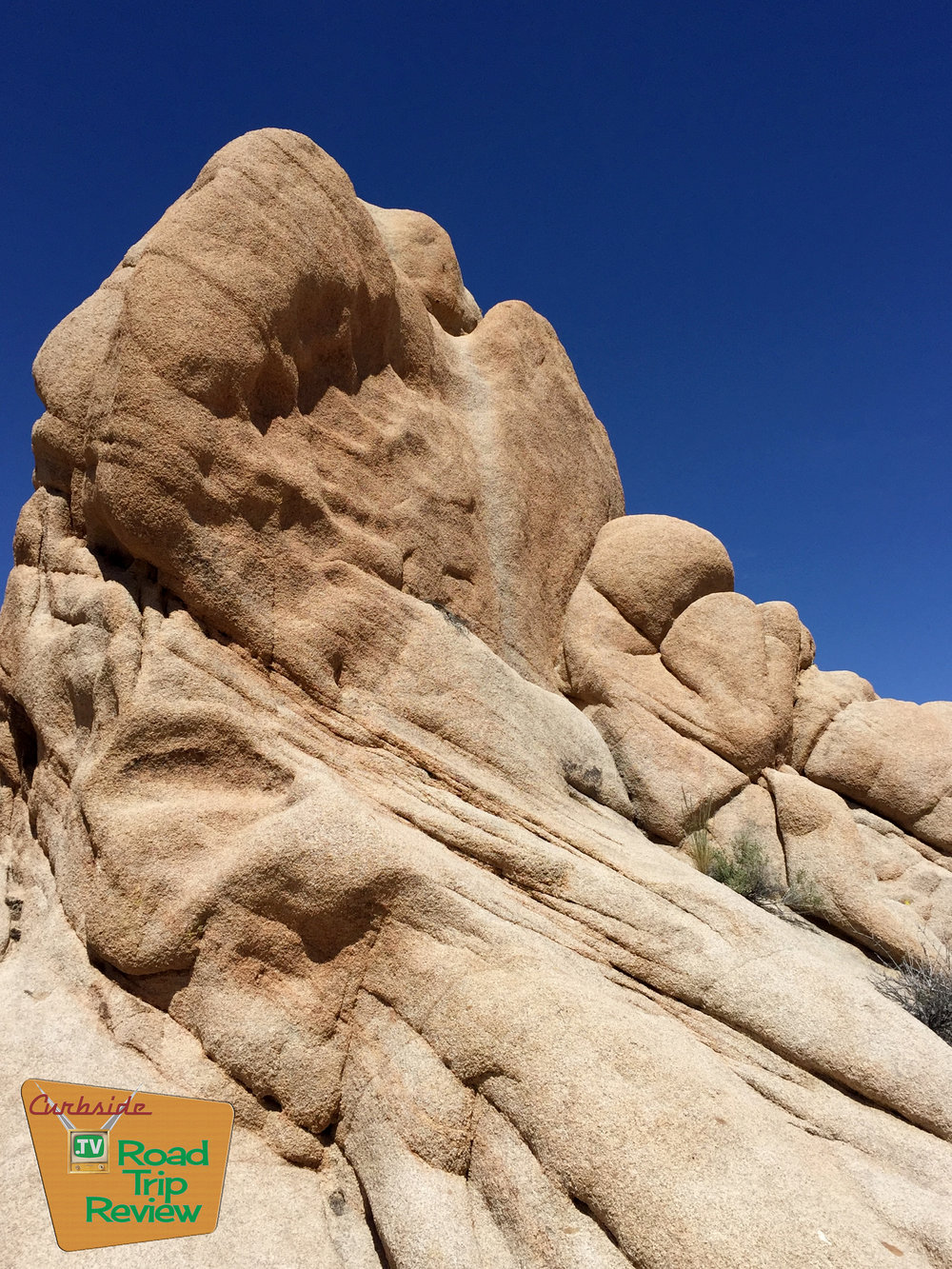 Joshua Tree National Park - 159.jpg
