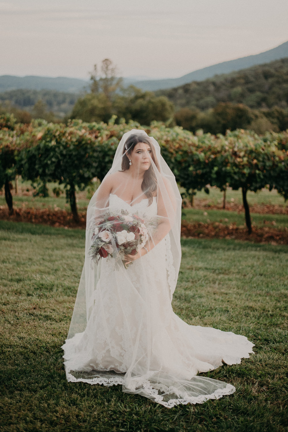 Debarge Winery in Lafayette Georgia a Vineyard Wedding