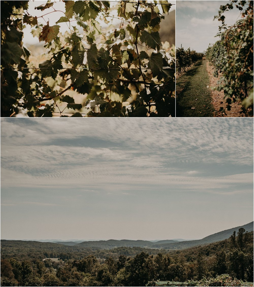 Vineyard Wedding at Debarge Winery in Lafayette, Georgia