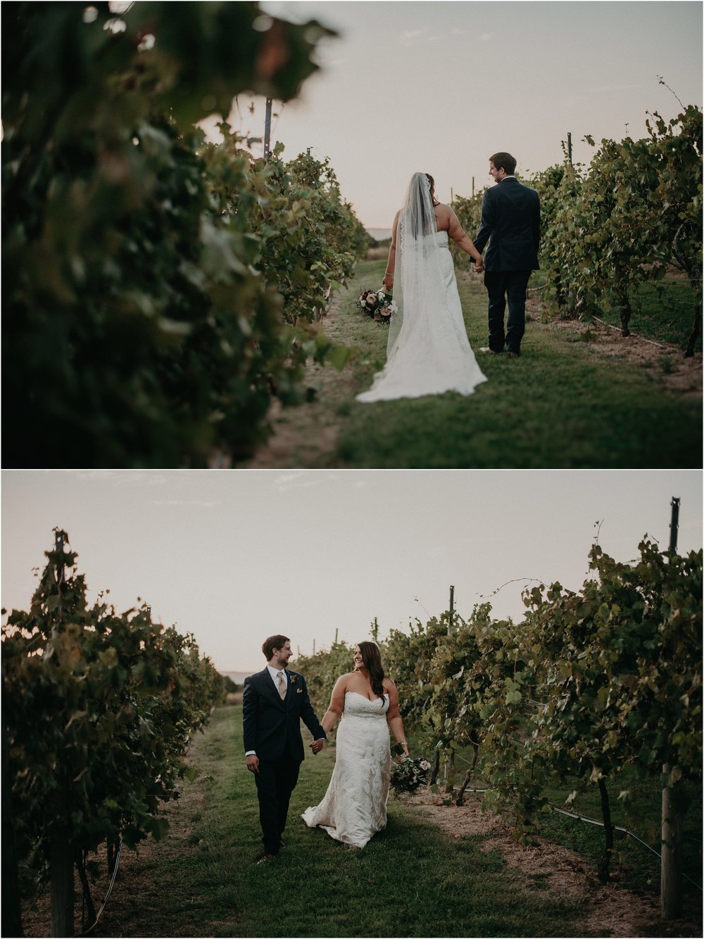 Bride and groom walk hand in hand through vineyards at sunset