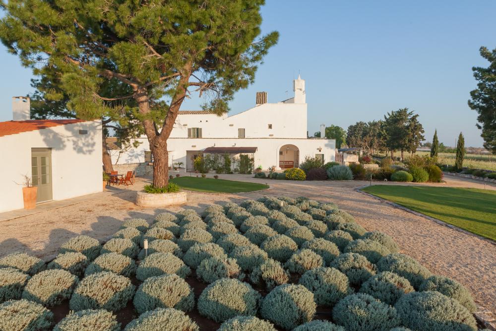 Commission: Masseria della Zingara - Puglia, Italy