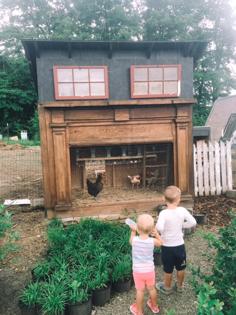 Creative Hoot Design Co + mantle made chicken coop!