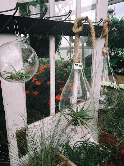 Creative Hoot Design Co + Hanging gardens