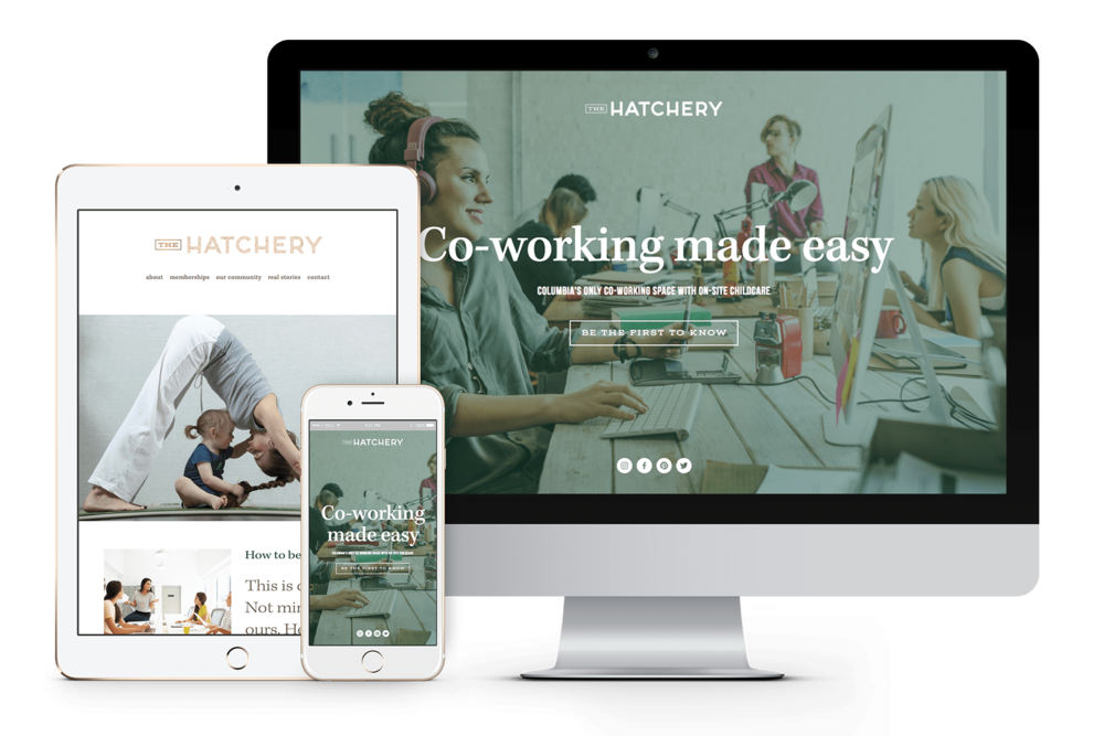 Squarespace website design and development for The Hatchery in Columbia, MO