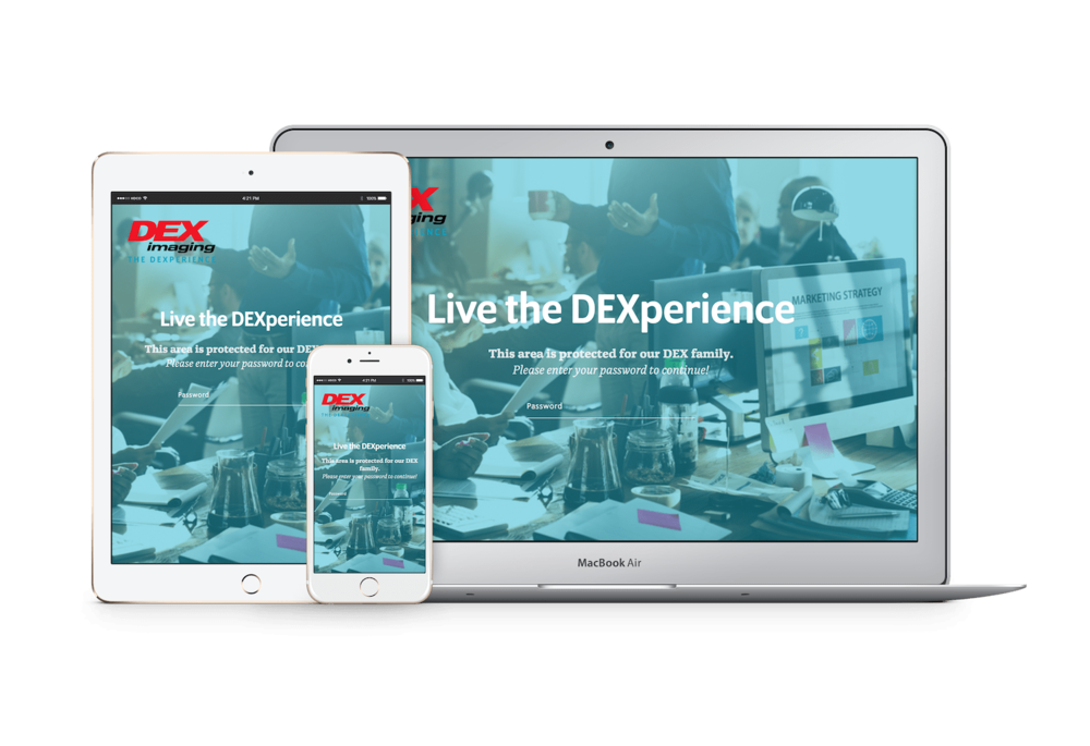 Website design for small businesses in Columbia, MO: DEX imaging website by Hoot Design Co.
