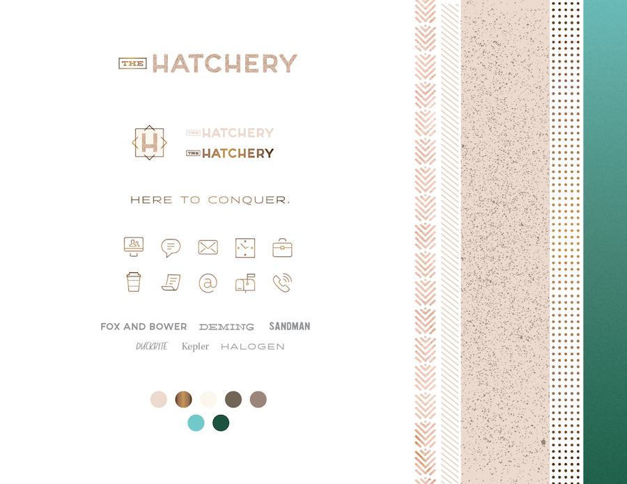 Brand for The Hatchery in Columbia, MO | Hoot Design Co.