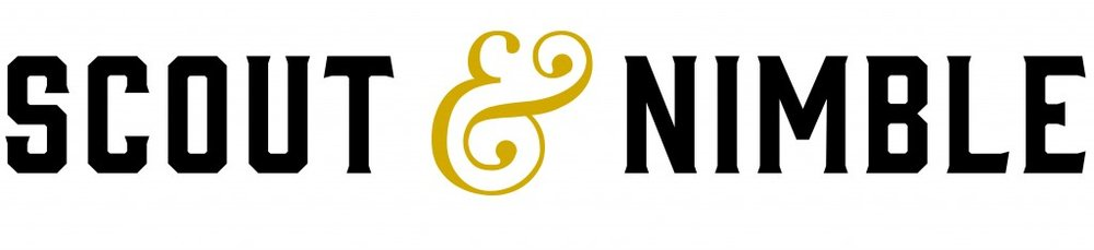 ScoutNimble-Logo-1024x234.jpg