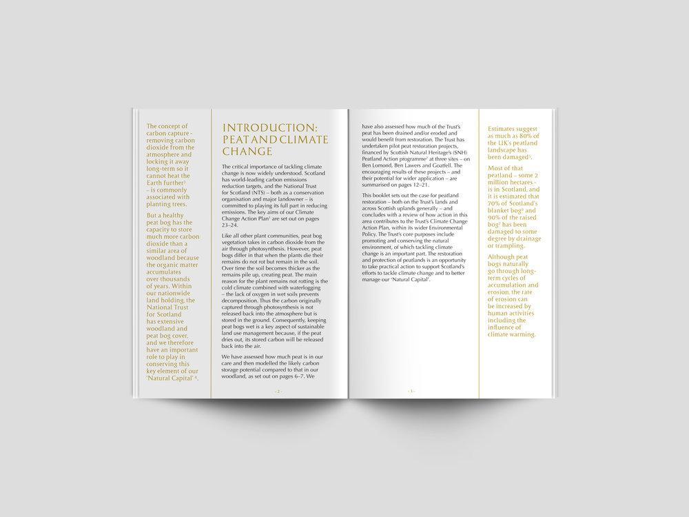 nts-publication-website15.jpg