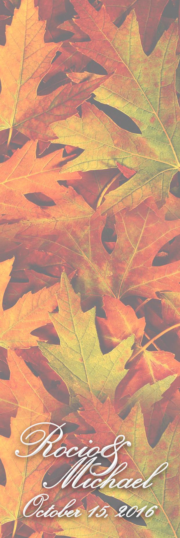 ROCIO photostrip 2.jpg