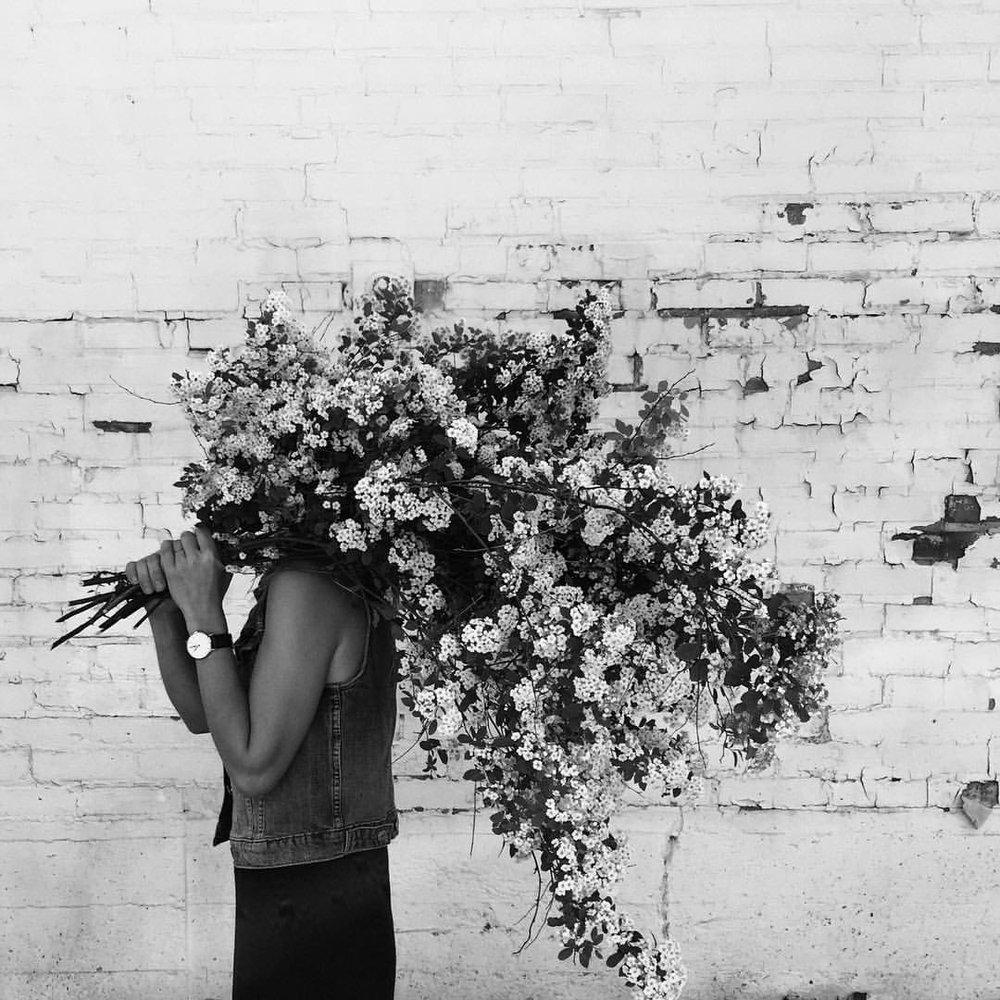 heather-page: Working hard / hardly working. All hail spirea! #winnipeg #florist #foraged #spirea #bouquet #flowers #floral #flowers (at Winnipeg, Manitoba)