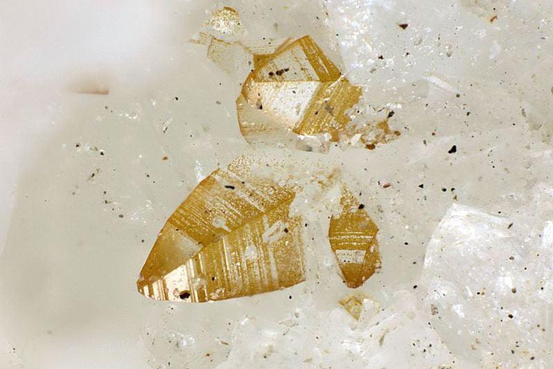 ifuckingloveminerals: Pachnolite Ivigtut Cryolite deposit, Ivittuut, Arsuk Fjord, Sermersooq, Greenland Pure Nature