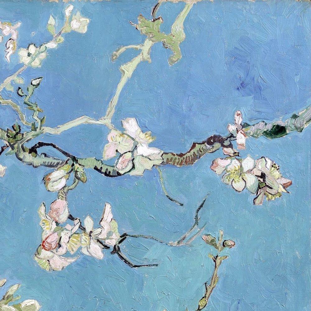 showslow: Almond Blossom (detail)~Vincent van Gogh