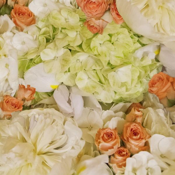 Hydrangea.Roses.jpg