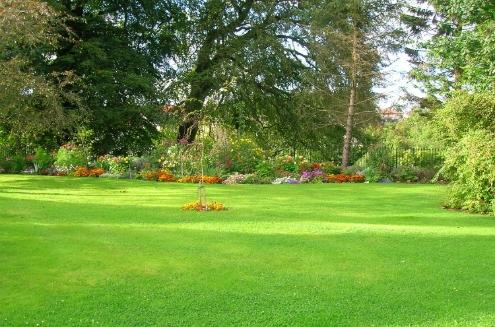 Lawn Garden.jpg