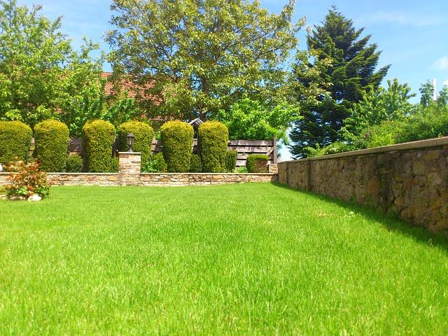 stone backyard.jpg