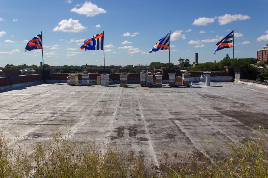MFairbanks Rooftop Project Space-03September2016websized.jpg