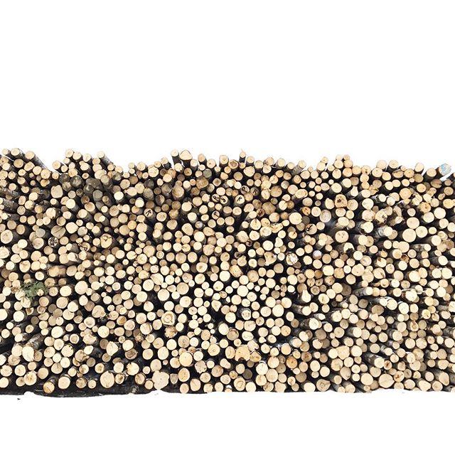 Lorsque vient le temps d'imaginer et de fabriquer un produit, nous sommes soucieux de protéger l'environnement. Nous fabriquons tous nos produits avec des matériaux nobles, naturels et écoresponsables, tel l'érable canadien certifié provenant de forêts canadiennes gérées de façon durable. • 👉🏻 Profitez de nos grandes soldes sur TOUS nos produits ! Lien pour la boutique en ligne dans la bio. • 🍁