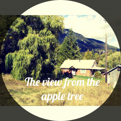 apple tree view