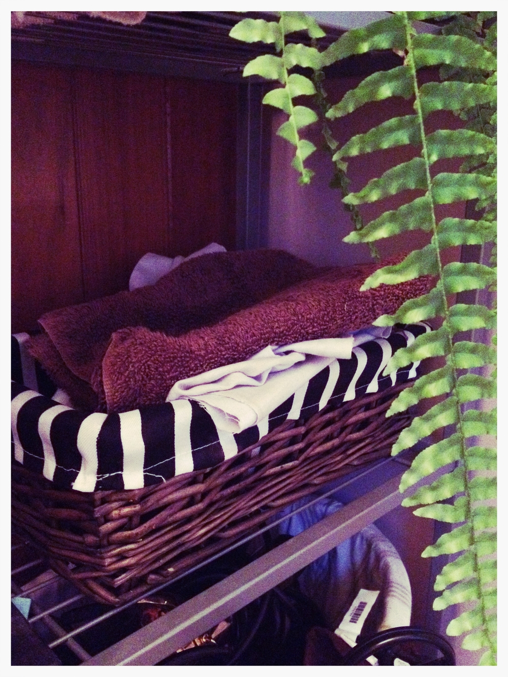 The rag-stash in the bathroom. And a fern photo bomb.