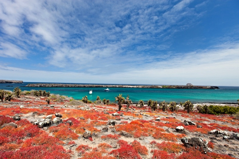 galapagos-islands-day-tours